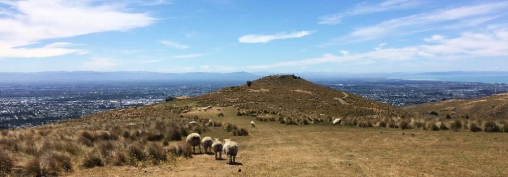 To je ten kopec co vidíš v Christchurch ať jsi kdekoli.