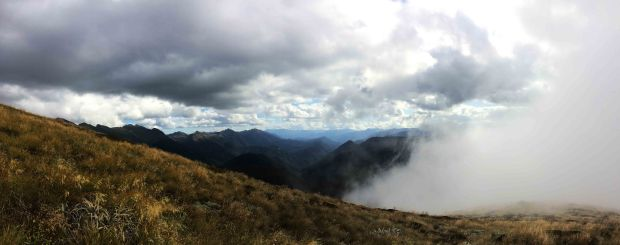 Kahurangi national park.