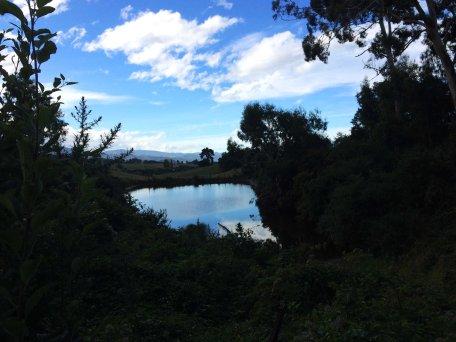 Jezero Rosse Bosse.
