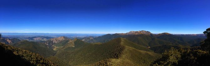 Mt. Arthur