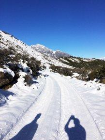 Cesta z ledovce.