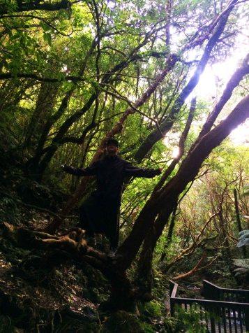 Pán lesa.
